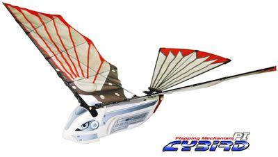Cybird800