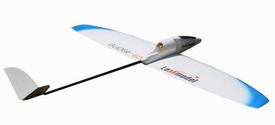 Glider-EDF-RC-Plane-1
