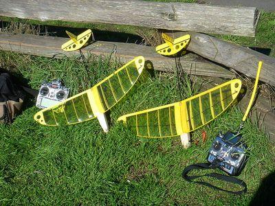 A2928612-22-Russ and Angus Bug micro DLG 2003