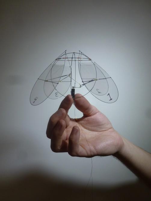 Flyingjellyfish