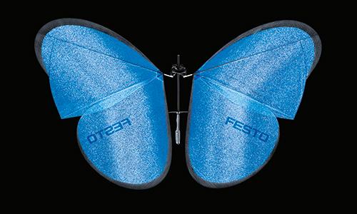 06_eMotionButterflies_00403_500px