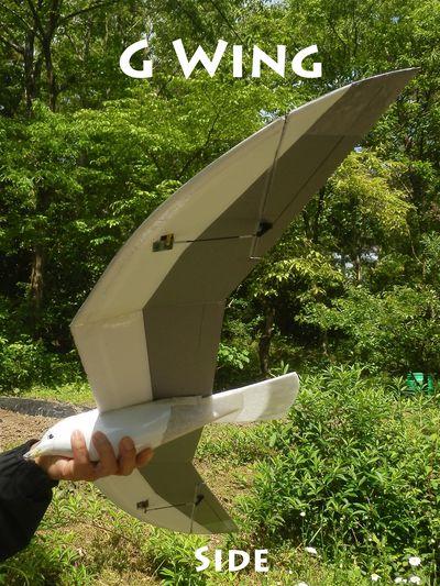 G Wing Side
