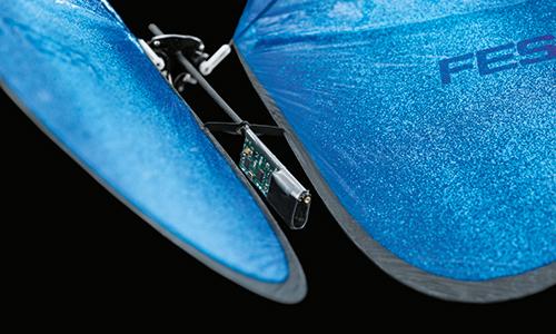 05_eMotionButterflies_00328_500px