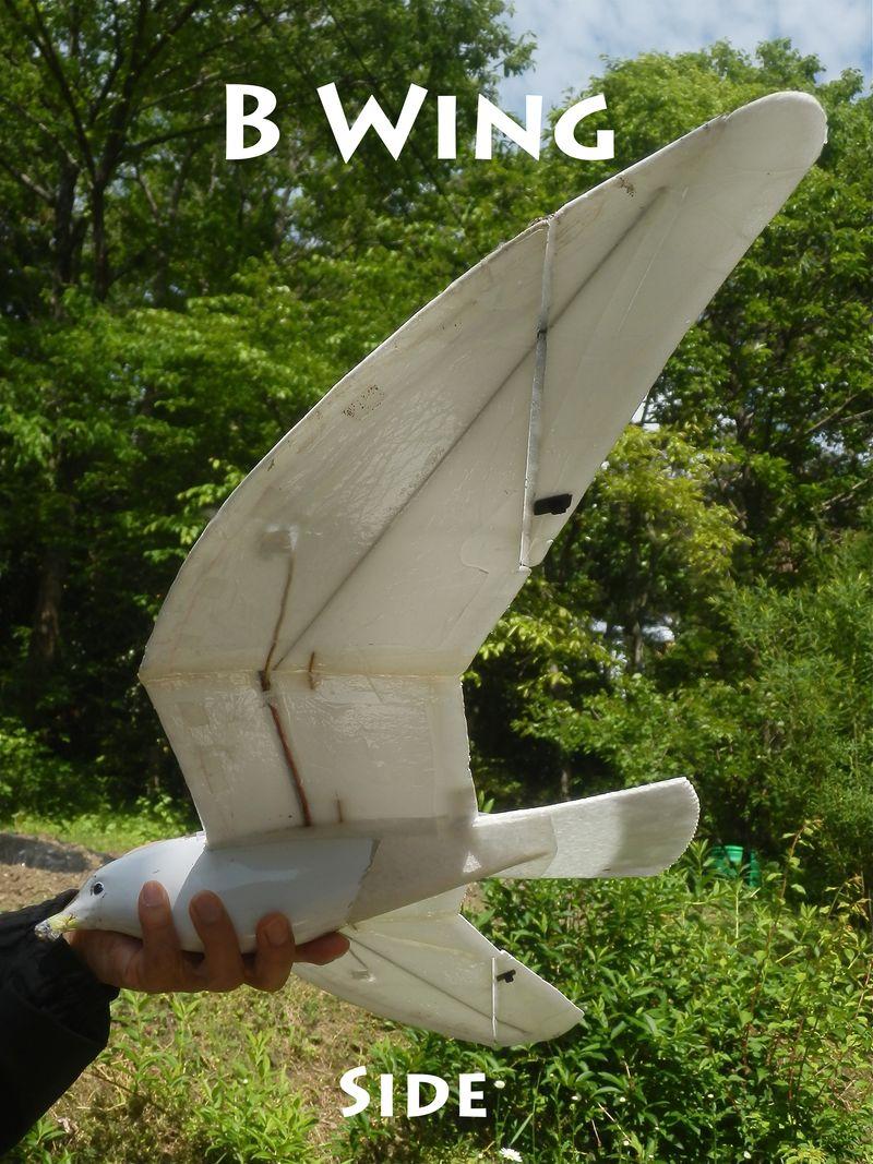 B Wing Side