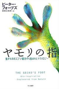 Geckosfoots