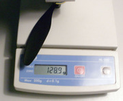 P6010430