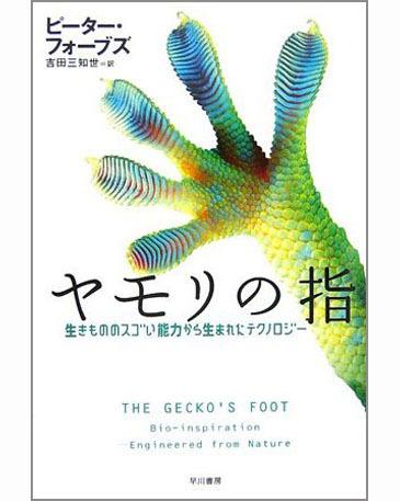 Geckosfoot