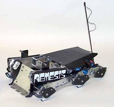 Rnemesis