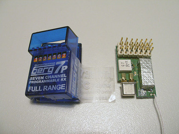 P6013993
