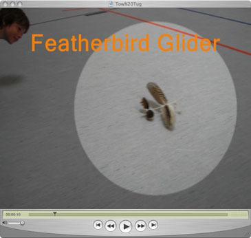 Featherbird_glider