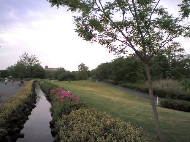 多摩川中央公園にて